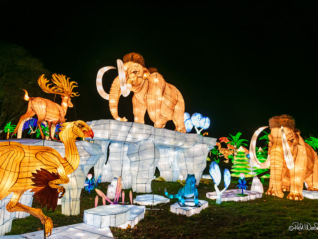 Mammoth Light Show Display