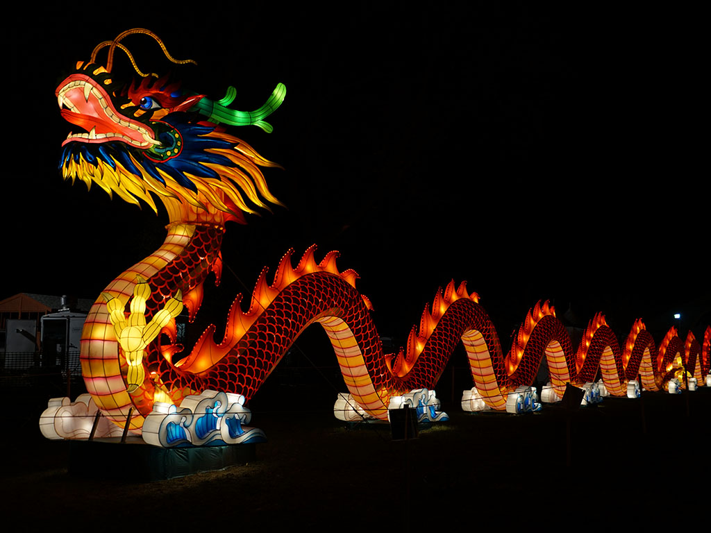 Dragon Light Show display