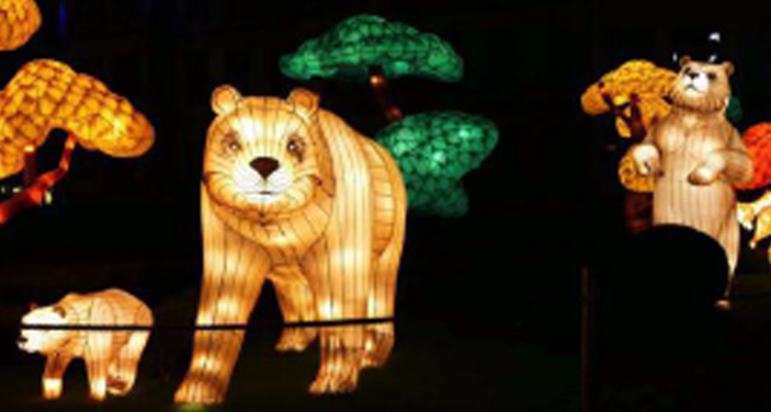 Polar Bear Lights in Niagara Falls